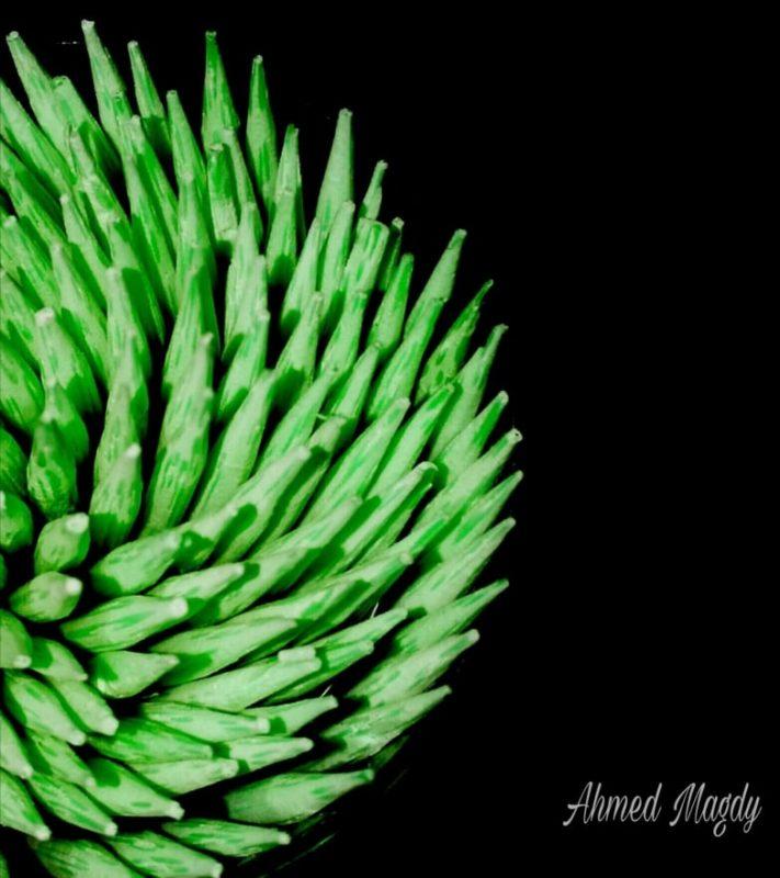 إبداع تصوير بالموبايل بواسطة أحمد مجدي