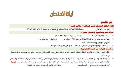 Photo of الخلاصه فى مراجعه التاريخ