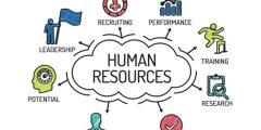 تعلم مبادئ الموارد البشرية ..