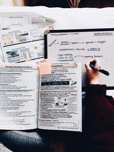 Photo of مذاكرة قبل الامتحان بأسبوعين