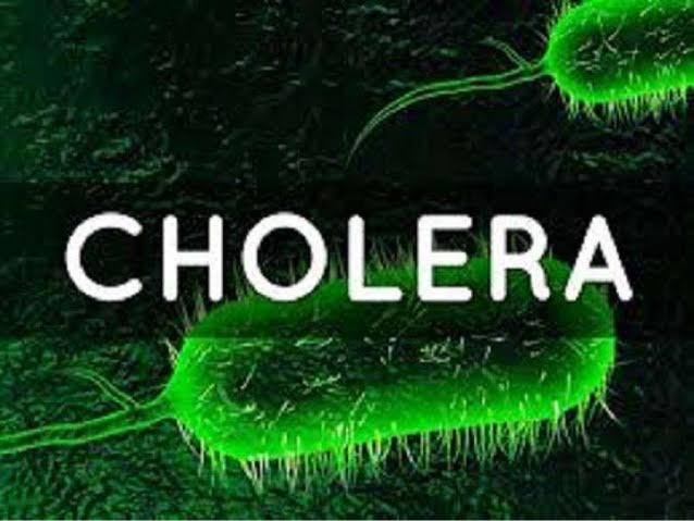 Photo of تعرف على الكوليرا بالتفصيل.