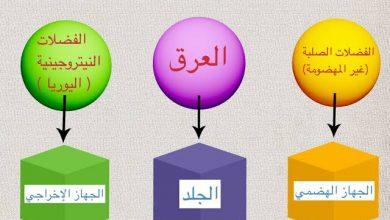 "Photo of أحياء الصف الثاني الثانوي"" باب الاخراج"""