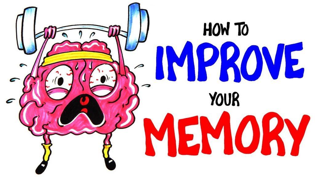 نظريات لتحسين الذاكرة