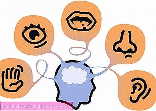 تعلم كيف تتعلم - الذاكرة الحسية